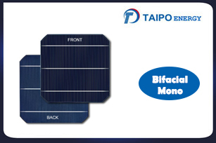 Bifacial Mono Solar Cell 156.75mm